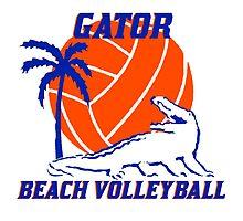 Gator Beach Volleyball by modernhart