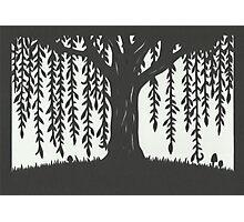 Print of handcut willow tree papercutting Photographic Print