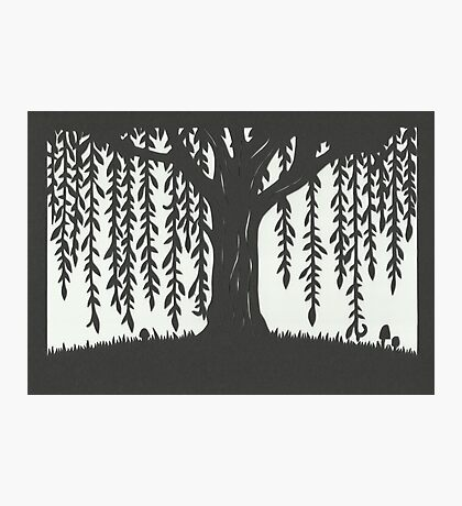 Print of handcut willow tree papercutting Photographic Print
