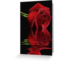 Radiant Rose Reflected Greeting Card
