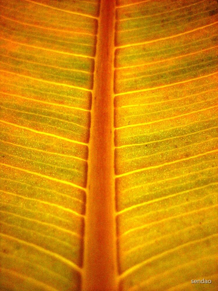 yelow leaf (series)....! by sendao