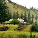 Norfolk Island towards Quality Row by Bev Woodman
