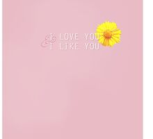 I love you and I like you (Parks and Recreation) by angiesdesigns