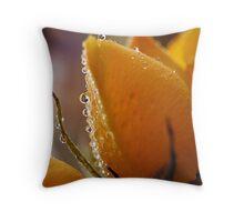 Sparkling Fresh Throw Pillow