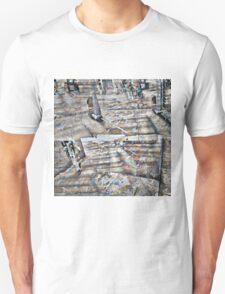CAM02123-CAM02126_GIMP_A T-Shirt