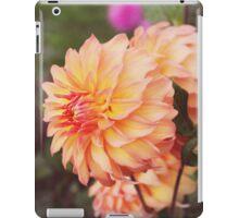 Peach Parfait iPad Case/Skin