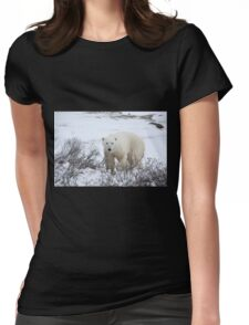 Polar Bear in the Arctic Willow Womens Fitted T-Shirt