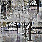 CAM02179-CAM02182_GIMP_A by Juan Antonio Zamarripa [Esqueda]