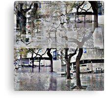 CAM02179-CAM02182_GIMP_A Canvas Print