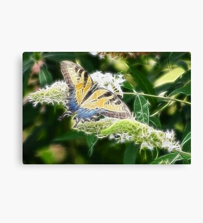 BUTTERFLY FRACTALIUS Canvas Print