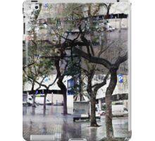 CAM02179-CAM02182_GIMP_B iPad Case/Skin