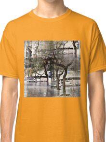 CAM02179-CAM02182_GIMP_B Classic T-Shirt