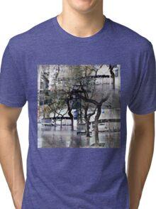 CAM02179-CAM02182_GIMP_B Tri-blend T-Shirt