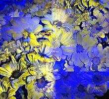 CAM02227-CAM02230_GIMP_A by Juan Antonio Zamarripa