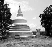Buddhist Temple in Sri Lanka by daytona235