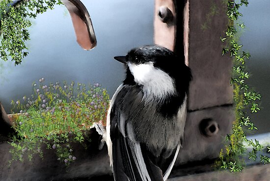 Garden Chickadee by Lynda   McDonald