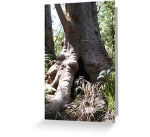 Valley Giant Greeting Card