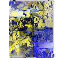 CAM02227-CAM02230_GIMP_B iPad Case/Skin