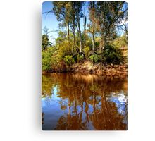 The Murray River & Young River Red Gums  Canvas Print