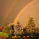 Rainbow Duo by HelmD