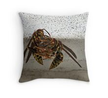 Wasps Building A Nest Throw Pillow
