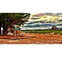 Vineyard Playground Photographic Print