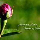 Mother's Day 3 by WildThingPhotos