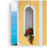 Flower in Window at Seaside Canvas Print