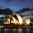 Sydney Opera House, dawn, travel, incons, landmarks, opera, house, arts by John Mitchell