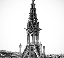Spire of the Basilica del Voto Nacional - Ecuador by Lisa Germany
