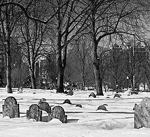 Buried in Boston by TonyCrehan