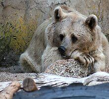 I can't bear it .......................... by Neil Swenser