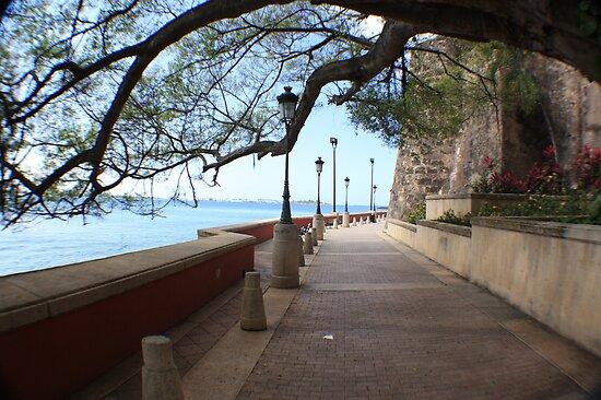 Old San Juan Paseo by William Vazquez