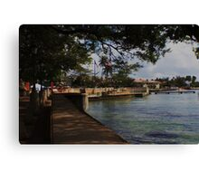 Paseo La Princesa Canvas Print