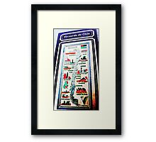 South American Item Framed Print