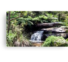 Waterfall at Araluen Botanic Park. Western Australia Canvas Print