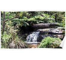 Waterfall at Araluen Botanic Park. Western Australia Poster