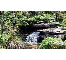 Waterfall at Araluen Botanic Park. Western Australia Photographic Print