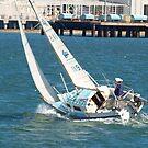under sail by sharon wingard