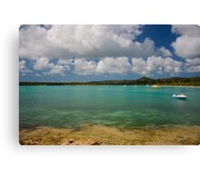 Isle of Pines D Canvas Print