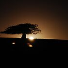 Back light by brilightning