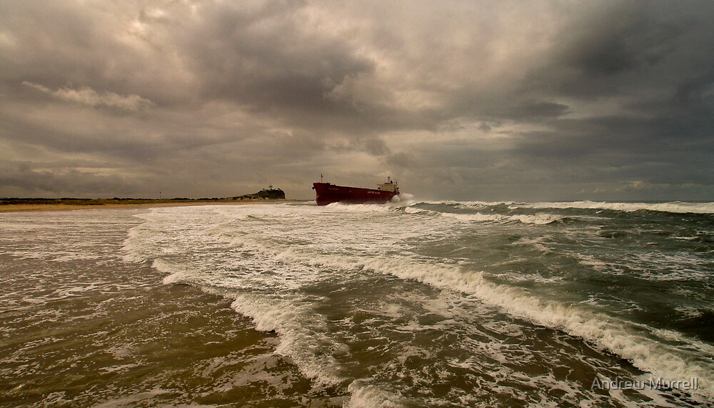 Look what washed up 2 by Andrew Murrell