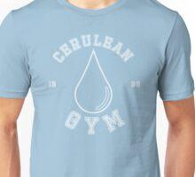 Pokemon - Cerulean City Gym Unisex T-Shirt