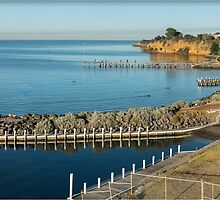 Beaumaris Bay Panorama by Greg Earl