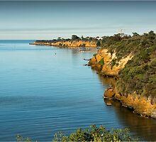 Beaumaris Cliffs 2 by Greg Earl
