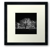 Holly Springs, Mississippi Framed Print
