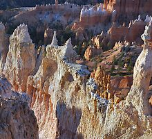 First Light, Bryce Canyon by Stephen Vecchiotti