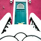 Snowy Park Slope, Brooklyn Brownstone by Vanpinni