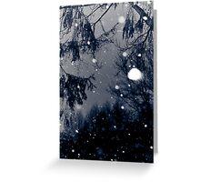 December Snow Greeting Card