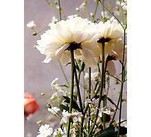 Flowers Photographic Print